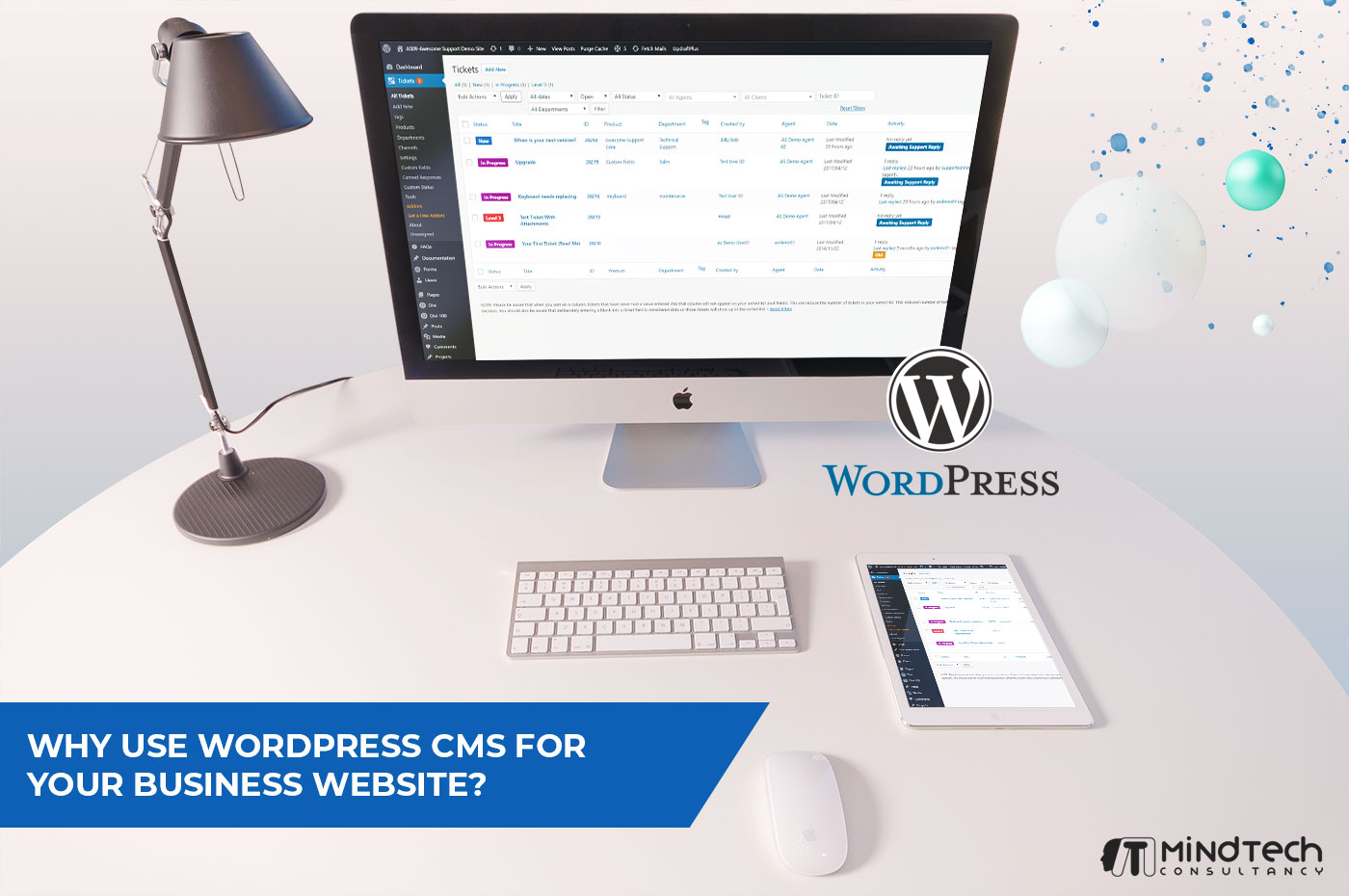 Why Use WordPress CMS